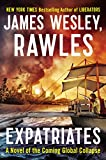 Expatriates: A Novel of the Coming Global Collapse (Coming Collapse)