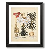 French Victorian Flower Lilies Contemporary Home Decor Wall Picture Black Framed Art Print