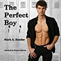 The Perfect Boy Audiobook by Mark A. Roeder Narrated by Bryant Sullivan