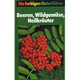 Beeren, Wildgemüse, Heilkräuter. Naturführer