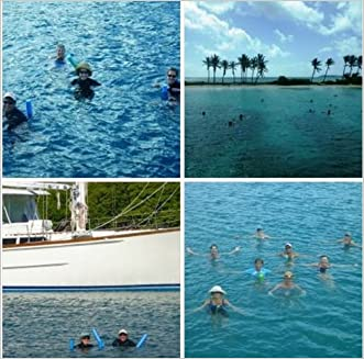 Noodling at Sea, or Staying Fit with Water Aerobics