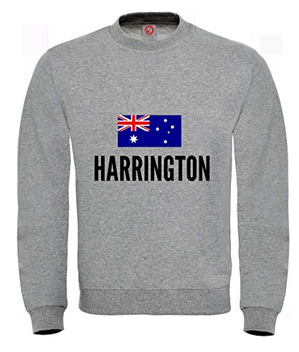 Felpa Harrington city Gray