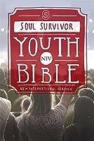 NIV Soul Survivor Youth Bible Hardback (Bible Niv)