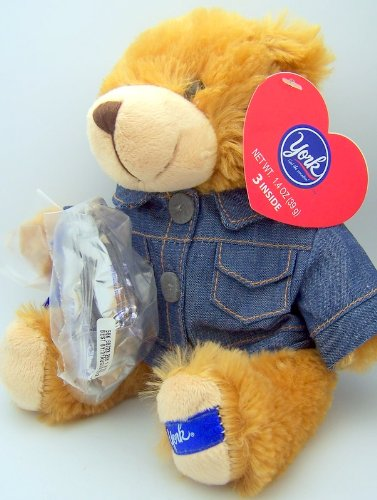 Ney York Peppermint Patty Plush Bear with Jean Jacket Amd Bag of Candy Gift for Her
