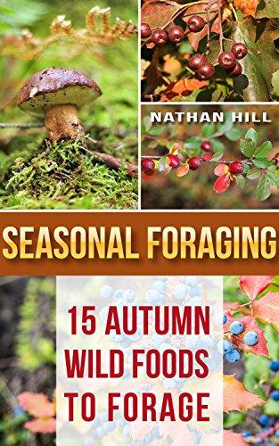 seasonal-foraging-15-autumn-wild-foods-to-forage-edible-wild-plants-four-season-harvest-foraging-for
