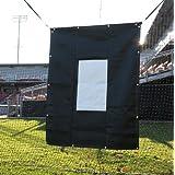 ProMounds Baseball Softball Vinyl Pitching Aid Backdrop by ProMounds