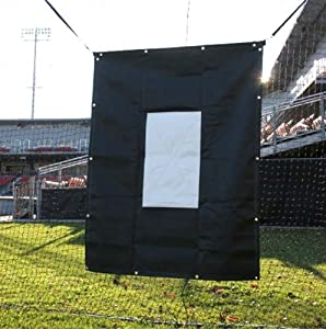 ProMounds Baseball Softball Vinyl Pitching Aid Backdrop by ProMounds