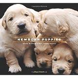 Newborn Puppies: Dogs in Their First Three Weeks