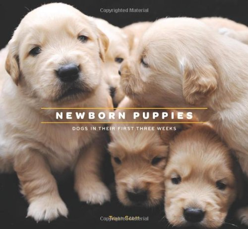Newborn Puppies: Dogs in Their First Three Weeks