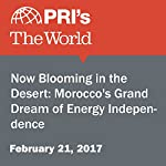Now Blooming in the Desert: Morocco's Grand Dream of Energy Independence | Chris Bentley