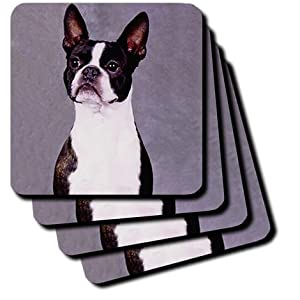 cst_267_1 Dogs Boston Terrier - Boston Terrier - Coasters - set of 4 Coasters - Soft