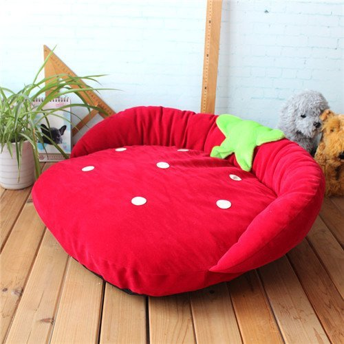 Strawberry-Dog-Beds-Designer-Pet-Beds-for-Dog-Cat-by-Duke-Austin