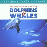 echange, troc Natural Sounds - Dolphins & Whales