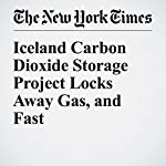 Iceland Carbon Dioxide Storage Project Locks Away Gas, and Fast | Henry Fountain