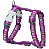Red Dingo Daisy Chain Patterned Dog Harness, M, 18 mm/ 42 - 57 cm, 35 - 53 cm Neck Size, Purple