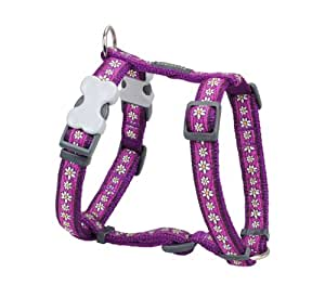 Red Dingo Designer Dog Harness, Medium, Daisy Chain Purple