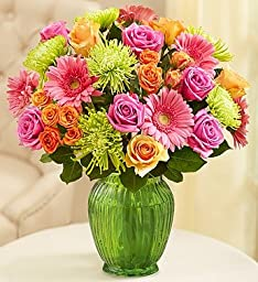 Flowers: Vibrant Blooms Bouquet Double Bouquet with Green Vase by 1-800 Flowers- Flower Arrangements