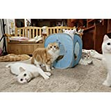 Kitty Play Cube (baby blue)#The best cat toy