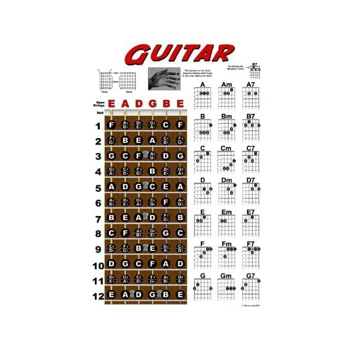 Amazon.com: Guitar Fretboard and Chord Chart Instructional Poster