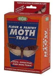 Amazon Com Springstar S202 Flour And Pantry Moth Trap