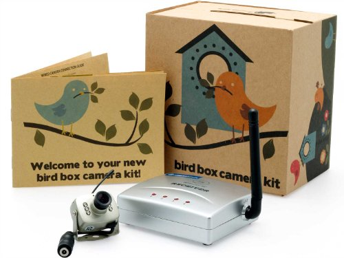 Wireless Bird Nest Box Wildlife Camera With Night Vision And Audio- Perfect For Your Garden