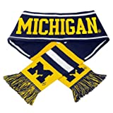 Michigan Wolverines NCAA 2013 Team Wordmark Knit Scarf at Amazon.com