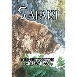 Safari The Yellowstone Grizzly Bear