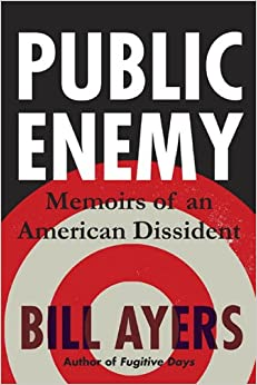 Photo of the Cover of the Book Public Enemy