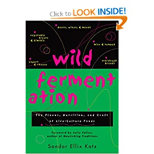 Wild Fermentation: The Flavor, Nutrition, and Craft of Live-Culture Foods [Paperback]