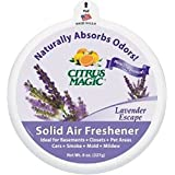 Citrus Magic Solid Lavender Escape Odor Absorber, 8-Ounce