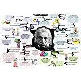 Poster - Albert Einstein Funny Poster For Office And Kids Room By 100yellow