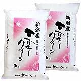 新米 新潟県産 白米 ミルキークイーン 10kg(5kg×2袋) 平成28年産