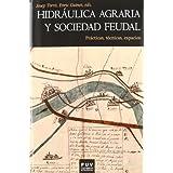 Hidráulica agraria y sociedad feudal: Prácticas, técnicas, espacio (Història)