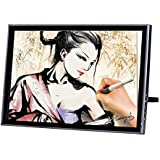 19 Inch Digital Pen Tablet Monitor Graphics Display