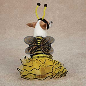 Casual Canine Bee Mine Dog Costume, Small, Yellow