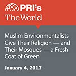 Muslim Environmentalists Give Their Religion — and Their Mosques — a Fresh Coat of Green | Chris Bentley