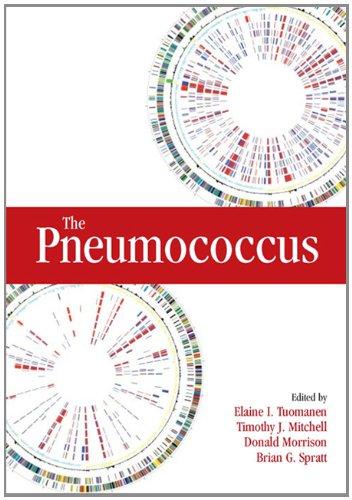 The Pneumococcus