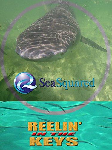 S2E9 Sea Squared Charters