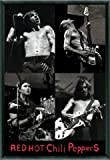 Poster - Red Hot Chili Peppers Poster und Kunststoff-Rahmen - Live, 2003 (91 x 61cm) von Red Hot Chili Peppers