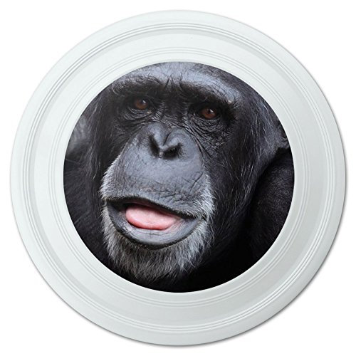 Chimpanzee Chimp Ape Monkey Novelty 9