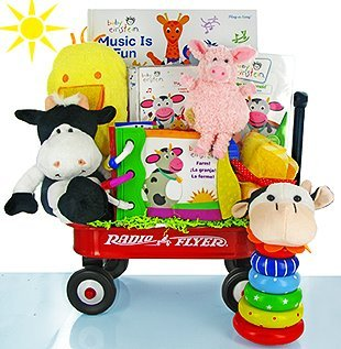 Baby Einstein On The Farm Gift Basket