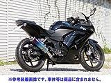 リアライズ:Aria チタン カールエンド (スリップオン) ニンジャ250R (JBK-EX250K)用マフラー
