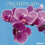 TeNeues 2014 Orchids