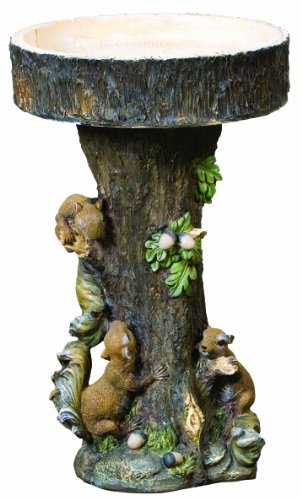 Kelkay Features Squirrel Tree Bird Bath