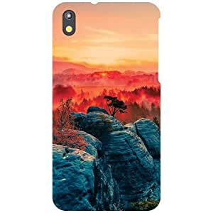 HTC Desire 816G Back Cover - Different Shades Designer Cases