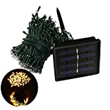 TLT Solar Powered 66ft 20m 200 LED Decor Fairy String Lights, Warm White for Bedroom, Christmas, Holiday, Party, Garden LED006Y