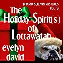 The Holiday Spirit(s) of Lottawatah: Brianna Sullivan Mysteries, Book 3 Audiobook by Evelyn David Narrated by Wendy Tremont King