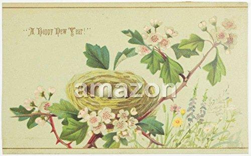 a-happy-new-year-bird-nest-branch-fire-insurance-company-akt-809