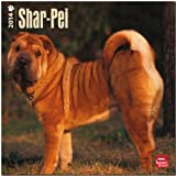 Shar-Pei 2014 Wall BrownTrout