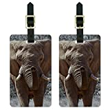 Africa African Elephant Luggage Suitcase Carry-On ID Tags Set of 2